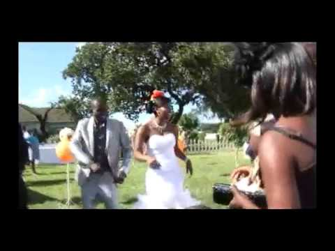 Download The Wedding Party 1