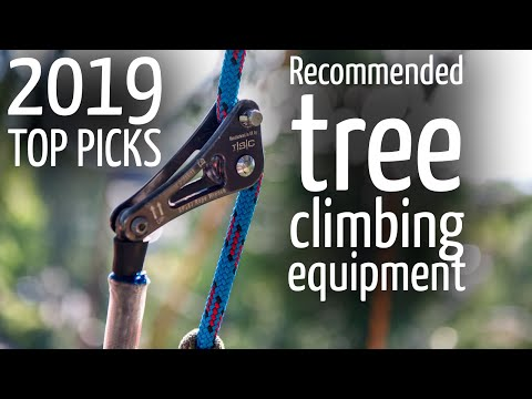 Tree Climbing Equipment Recommendations - Ropes, Harness, Spurs, Pulleys, Bags, Helmets, Ascenders
