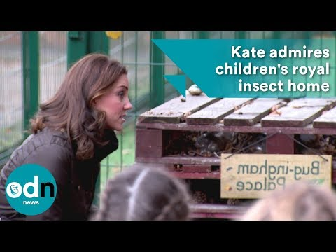 """Bug-ingham Palace"": Kate admires children's royal insect home"