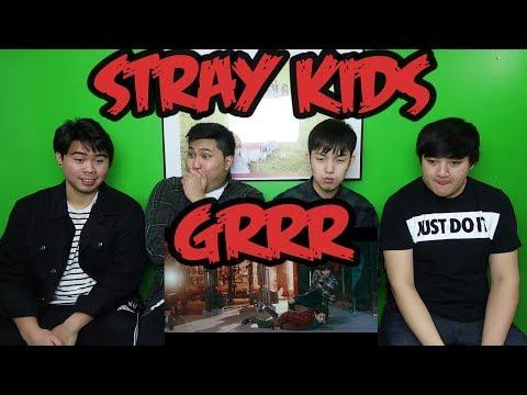 STRAY KIDS - GRRR PERFORMANCE VIDEO REACTION (FUNNY FANBOYS)
