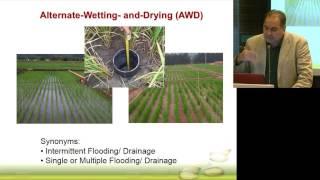 ILSI India: Crop Irrigation With Special Reference To Rice Cultivation (Dr. Reiner Wassmann)