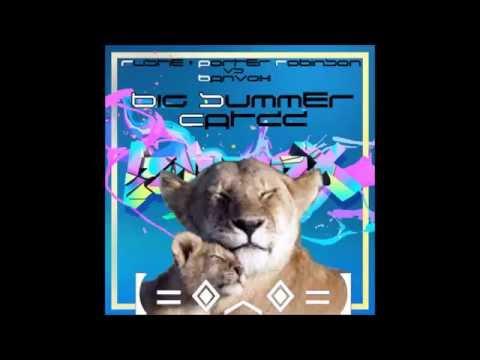 Rustie & Porter Robinson x Banvox - Big Summer Catzz (Mashup/Edit by Nyguita)