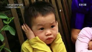 세계테마기행 - 어른들의 동화 베트남 1부- 한 발짝 더 들어가면 별세상_#001