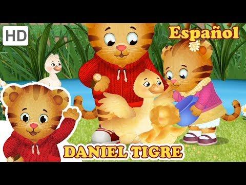 Daniel Tigre en Español - Mi Hermanita es la Mejor! | Videos para Niños