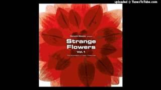 ごきげんいかが 1・2・3 SketchShow 「Strange Flowers Vol.1」収録版...