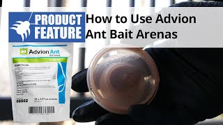 How to Use Advion Ant Bait Arenas