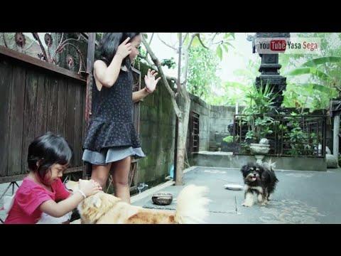 Lagu Bali Anak  Mang Ratih_Bapa Nak Kija