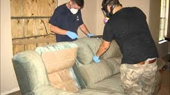 SWAT Action Tear Gas Odor Cleaning | (877) 627-7458 | Local, Licensed in Rockwall, TX 75032
