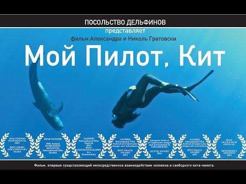 Dolphin Embassy. Мой Пилот, Кит / My Pilot, Whale (RUS)