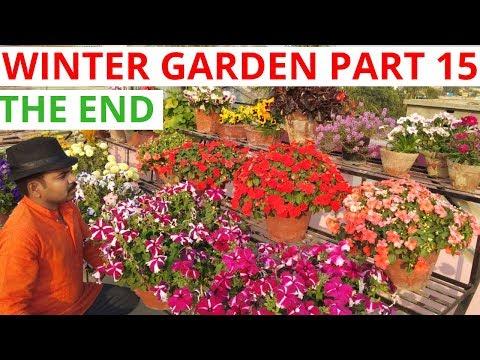 My new upcoming videos, Winter Garden part 15