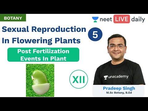 neet:-sexual-reproduction-in-flowering-plants---l-5-|-unacademy-neet-|-class-12-|-pradeep-sir