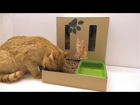 Diy Cat Food Dispenser From Cardboard At Home Youtube