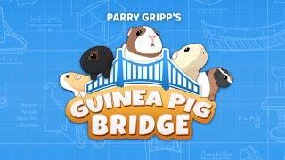 Guinea Pig Bridge!