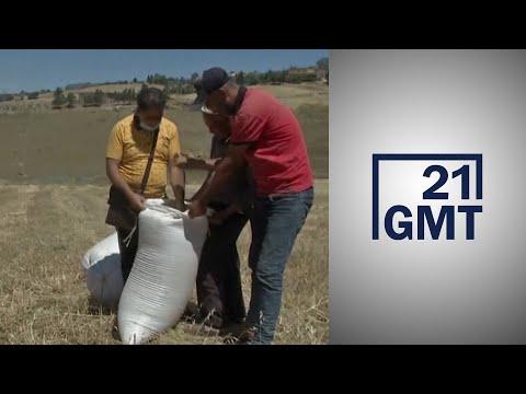 بدء موسم حصاد القمح في الجزائر وسط شكاوى المزارعين من إهمال السلطات  - 07:58-2020 / 7 / 3