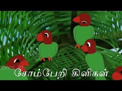 சோம்பேறி கிளிகள் | Lazy Parrots ( Tamil Stories ) | Animal Stories for Kids