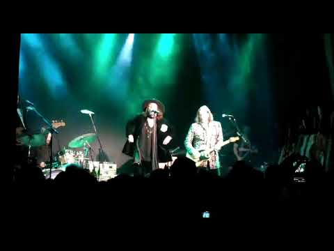 Kenny Young - The Black Crowes Rocked a Reunion Show After Tour Announcement