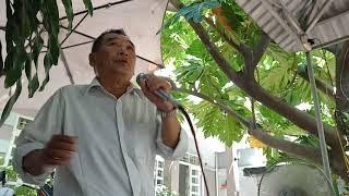 Kim Trung Vĩnh Hải 2