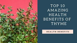 Top 10 Health Benefits of Thyme