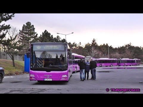 Megérkezett az első 10 db. lila autóbusz Veszprémbe