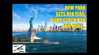 New York Passes 6 NEW Anti Gun Laws