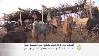 تونس تواجه تحديات ارتفاع معدلات البطالة