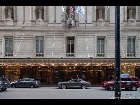The Palmer House Hotel: A Midwest Domus Aurea