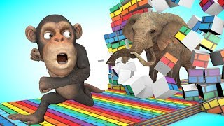 Funny Monkey runs learn colors as he finds animal friends around island style PC games
