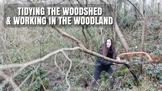 Working In The Woodland & Getting The Wood Shed Tidy