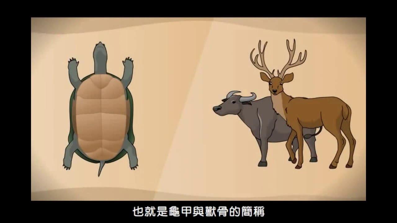 中國古文明03甲骨文
