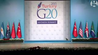 Stray cats frolic across stage at G20 summit