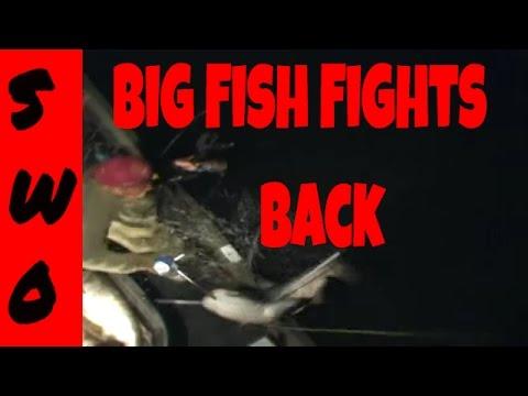 Big Fish Blooper