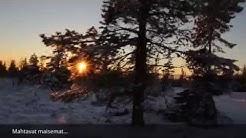 Vaasan Hiihtäjät - Rinteestä lumille leiri