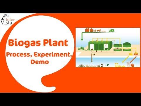 Biogas Plant - Process, Experiment, Demo