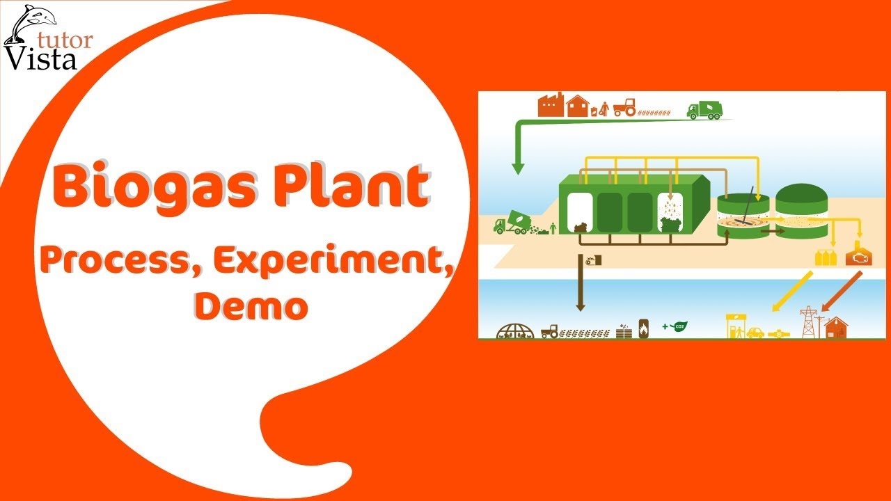 Biogas Plant Process Experiment Demo Youtube