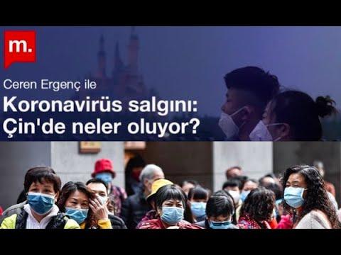 Koronavirüs Salgını: Çin'de Neler Oluyor? Ceren Ergenç Ile Söyleşi