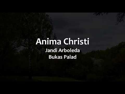 Anima Christi Instrumental