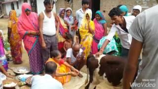 Mamta bhare din