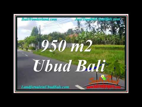 Beautiful 950 m2 LAND SALE IN Sentral / Ubud Center BALI TJUB648