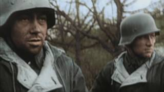 Luxembourg civil war 10-year anniversary - real combat footage of Luxembourg civil war