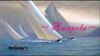 ~ Amapola ~