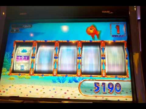 Goldfish slot machine bonus forum poker superstars 2 free download