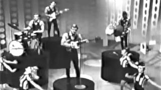 The Strangeloves - Cara Lin (Shindig 1965).flv