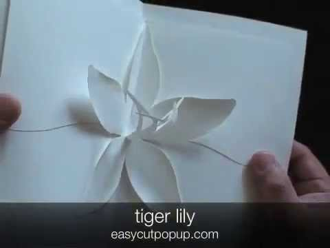 12 Beautiful Easy To Make Kirigami Pop Up Cards YouTube