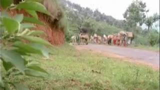 vaarango vaarango pannadi