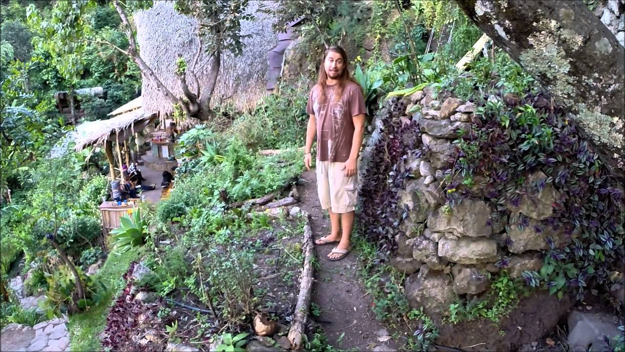 Permaculture Tip Of The Day Terrace Gardens Youtube