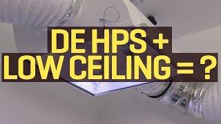 1000W DE HPS with Low Ceiling?