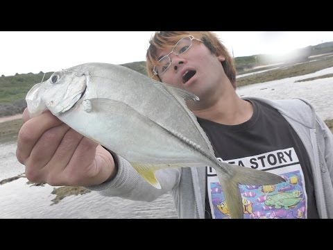 干潮��り残�れ�魚を釣る�#1