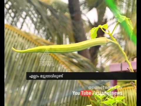 Ambika 's success story of  organic Farming : Haritham @ Kochi