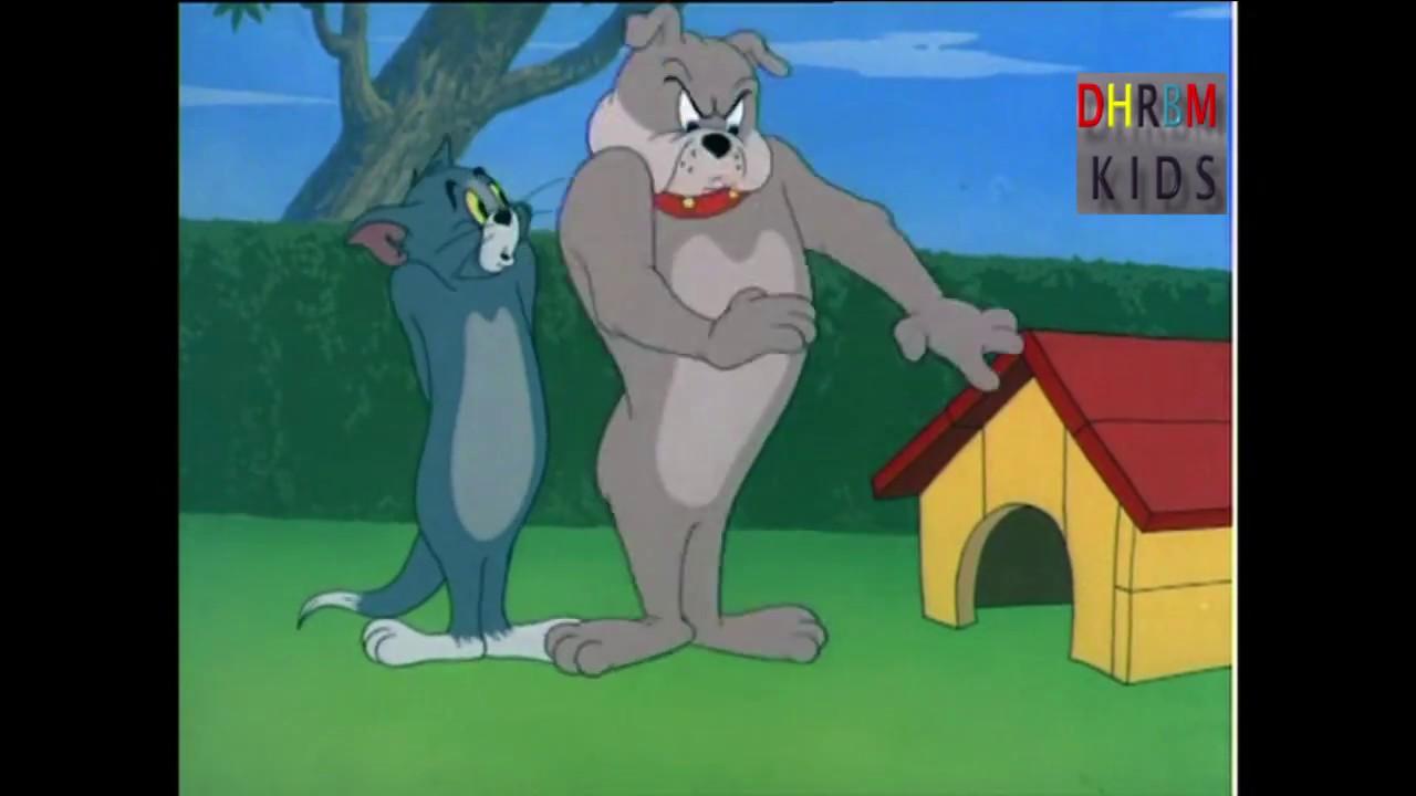 توم وجيري عربي حلقة بيت الكلب Tom And Jerry Youtube