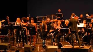 Erykah Badu and The Brooklyn Philharmonic @ BAM 06/08/13 - Twinkle